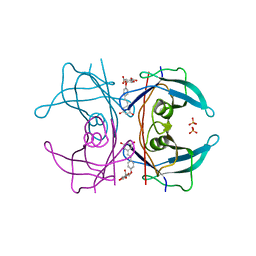 Molmil generated image of 5akt
