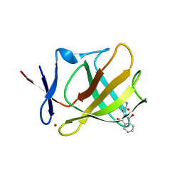Molmil generated image of 5ami