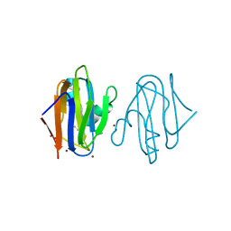 Molmil generated image of 5amt