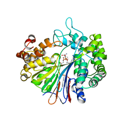 Molmil generated image of 5b5t