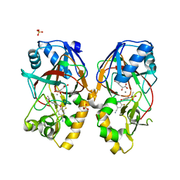 Molmil generated image of 5bkd