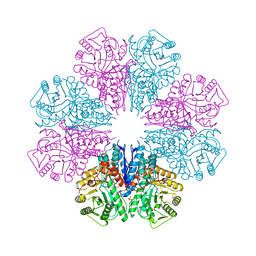 Molmil generated image of 5bof