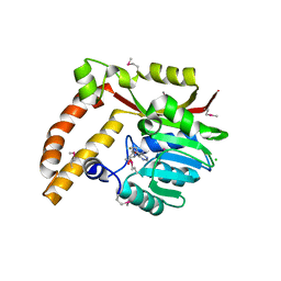 Molmil generated image of 5bp7