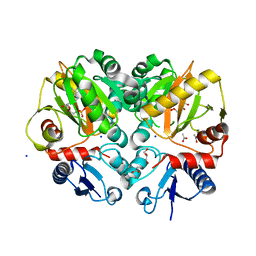 Molmil generated image of 5bph
