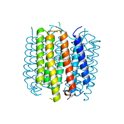 Molmil generated image of 5br2