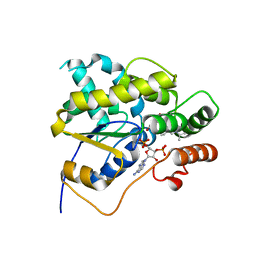 Molmil generated image of 5byj