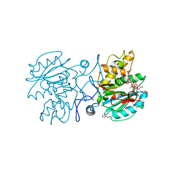 Molmil generated image of 5c4b