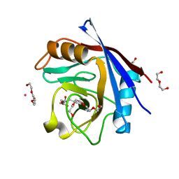 Molmil generated image of 5ccn