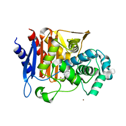 Molmil generated image of 5chj