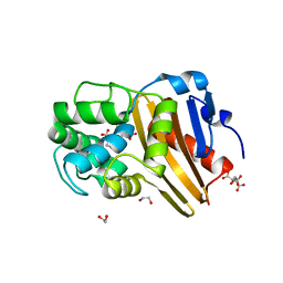 Molmil generated image of 5ctm