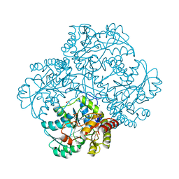 Molmil generated image of 5d5s