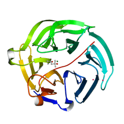 Molmil generated image of 5d9d
