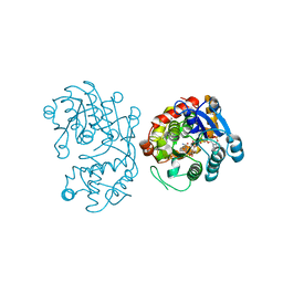 Molmil generated image of 5dbf