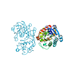 Molmil generated image of 5dbg