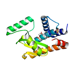Molmil generated image of 5dbs