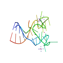Molmil generated image of 5de8