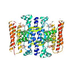 Molmil generated image of 5ded
