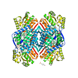 Molmil generated image of 5dib