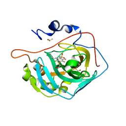 Molmil generated image of 5doh