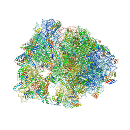 Molmil generated image of 5dox