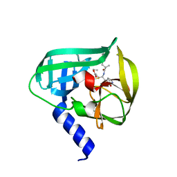 Molmil generated image of 5dp4