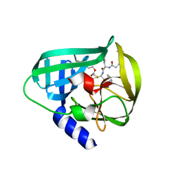Molmil generated image of 5dp6