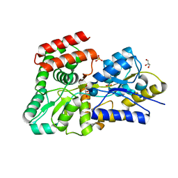 Molmil generated image of 5dvi