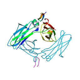 Molmil generated image of 5dvm