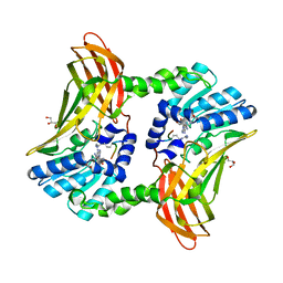 Molmil generated image of 5dxa