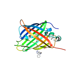 Molmil generated image of 5dy6