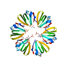 Molmil generated image of 5dy9