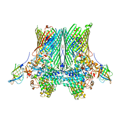 Molmil generated image of 5fq6