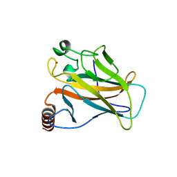 Molmil generated image of 5g4n