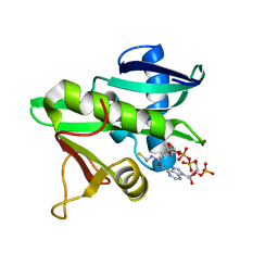 Molmil generated image of 5gcn