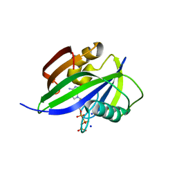 Molmil generated image of 5ghj