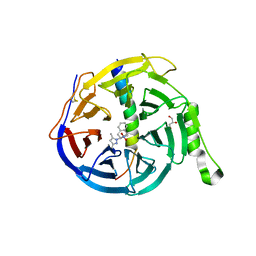 Molmil generated image of 5h14