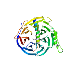 Molmil generated image of 5h24
