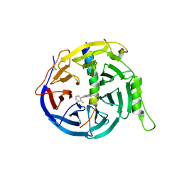 Molmil generated image of 5h25