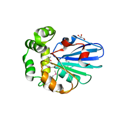 Molmil generated image of 5h3b