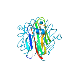 Molmil generated image of 5h4b