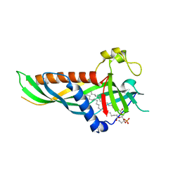 Molmil generated image of 5h5a