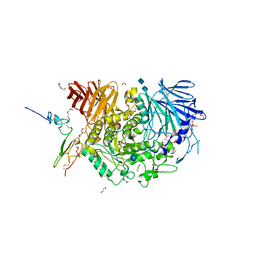 Molmil generated image of 5h9o