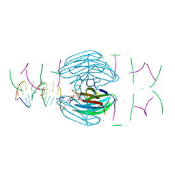 Molmil generated image of 5hch