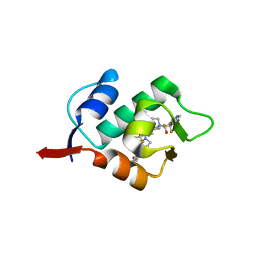 Molmil generated image of 5hmk