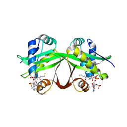 Molmil generated image of 5hmn