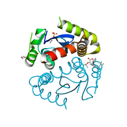 Molmil generated image of 5hrr