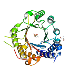 Molmil generated image of 5inj