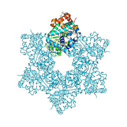 Molmil generated image of 5j4y