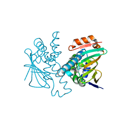 Molmil generated image of 5j6l
