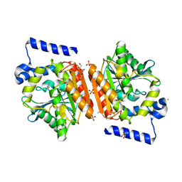 Molmil generated image of 5jd4